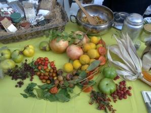 Frutti e colori dell'autunno