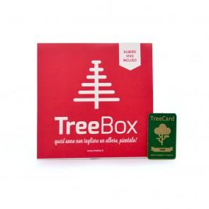 treedom-treebox