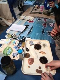 Laboratori di biologia marina