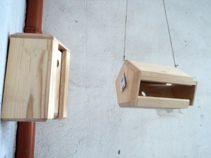 Uni feeder + nest box