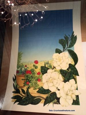 Copertine di Gardenia