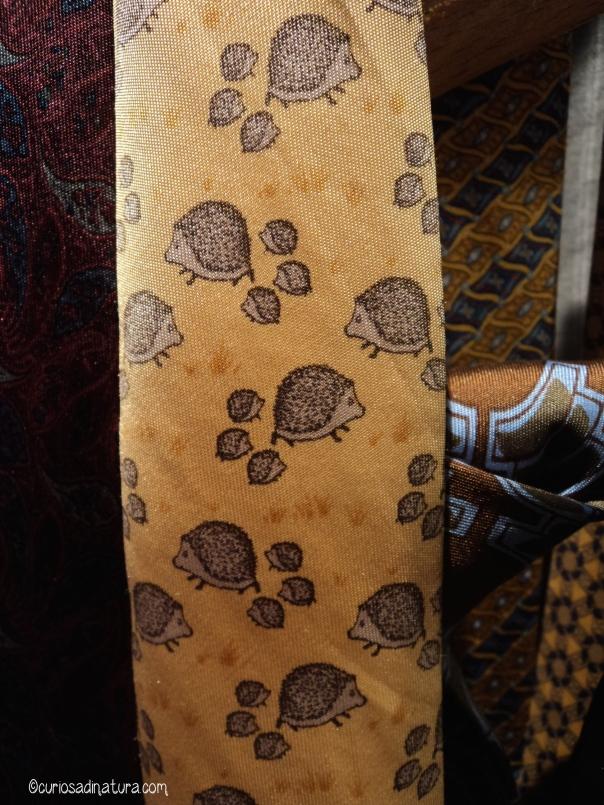 Le cravatte (anche con i ricci)