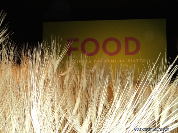 Mostra Food Milano