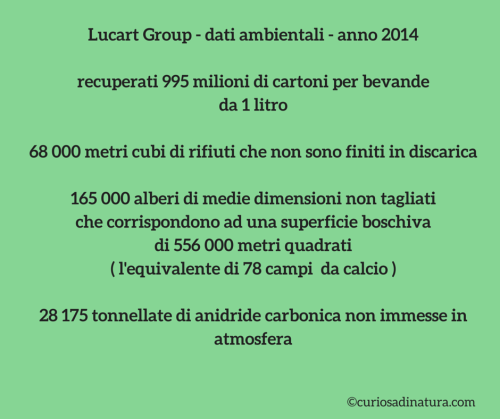 dati_Lucart