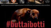 #ButtaiBotti - campagna Lega Nazionale per la Difesa del Cane