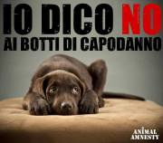 """Io dico no ai botti"" - campagna di Animal Amnesty"