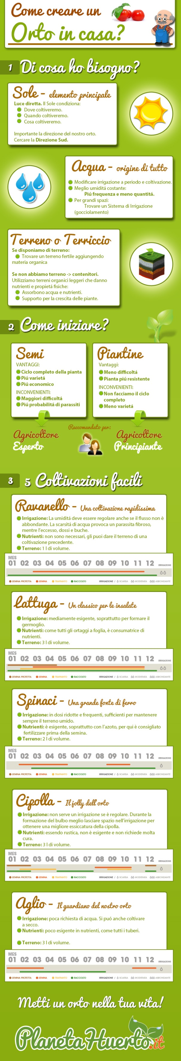 infografia-huerto-IT