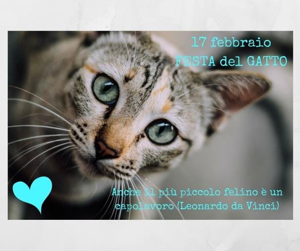 17feb_festa_Gatto