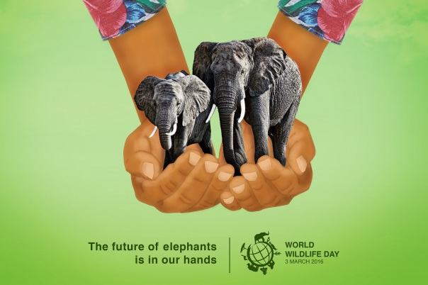 2_world_wildlife_Day_2016