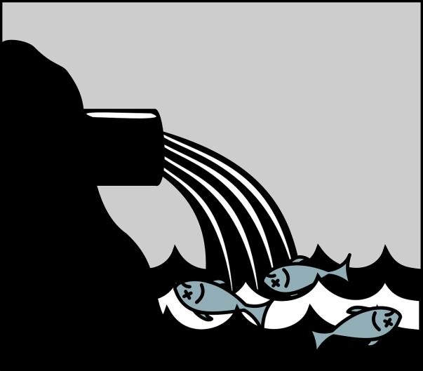 dead-inquinamento-mare