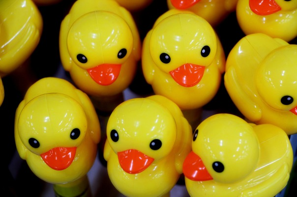 yellow_duck