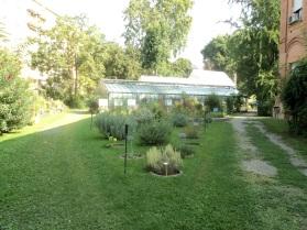 ingresso giardino posteriore