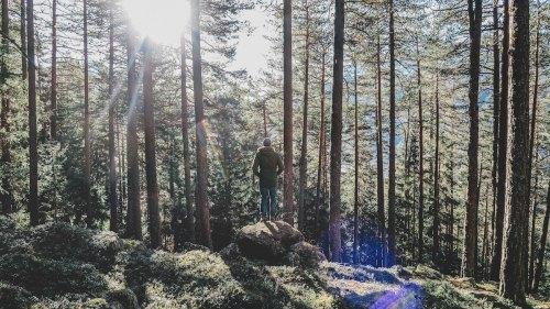 benessere_natura