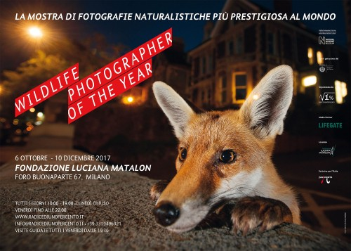 Manifesto della mostra Wildlife Photographer of the Year 2017