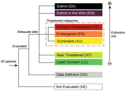categorie_estinzione