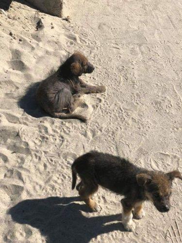 Naomi e Claudia sulla spiaggia