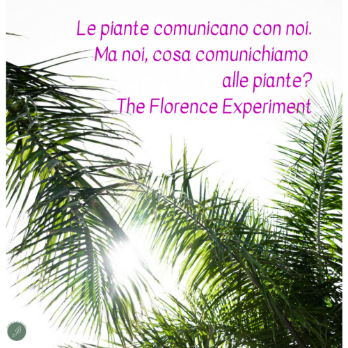 the florence experiment