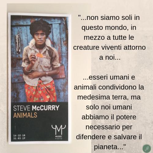 Animals - Steve McCurry - Mudec Milano