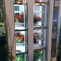 distributore di piante e fiori