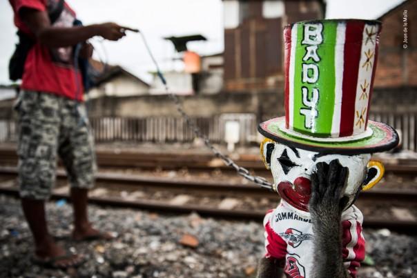 69 © Joan de la Malla - The sad clown - Wildlife Photographer of the Year