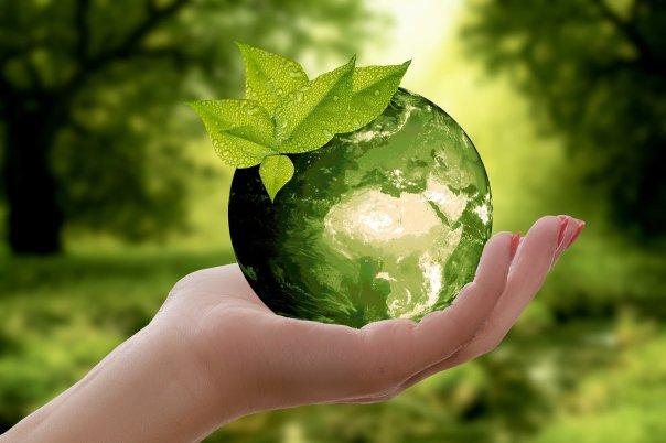 Sviluppo sostenibile nelle aziende