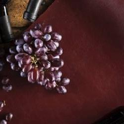 Vegea Wine Leather (foto©Elliis.com)